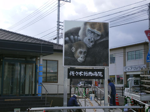 20130127_sasaki_ah_02