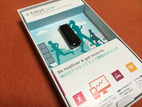 20131006_fitbit