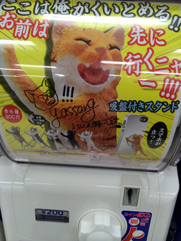 20140417_cat_02