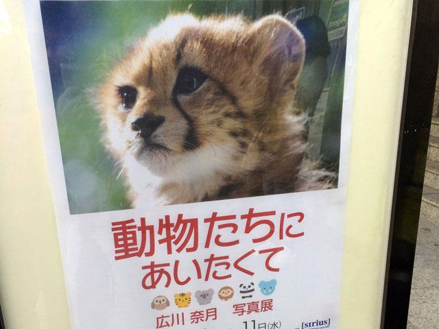 20150315_natsuki_01