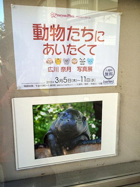 20150315_natsuki_02